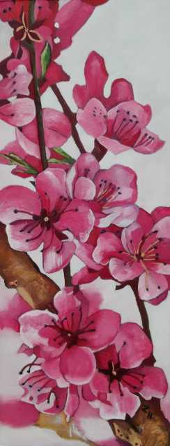 Virágzik